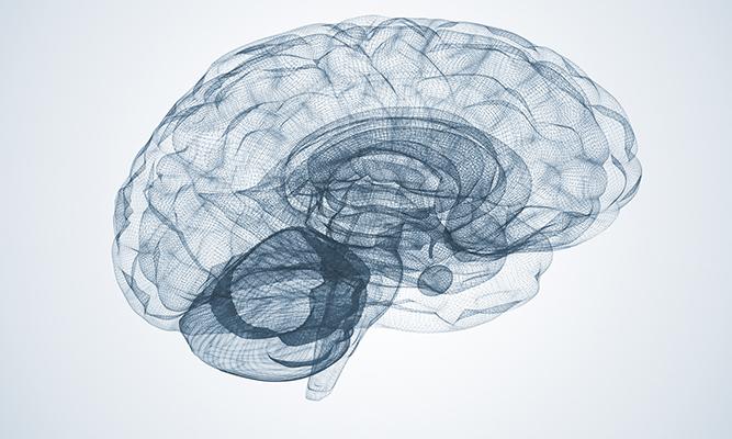 Des Nouvelles de l'Étude luxembourgeoise sur la maladie de Parkinson